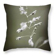 Flowering Grass Throw Pillow