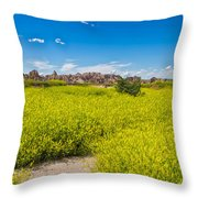 Flowers In The Badlands Throw Pillow
