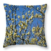 Fluffy Catkins At At Tree Against Blue Sky Throw Pillow