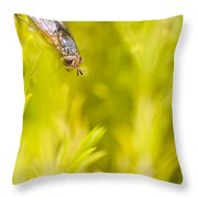 Fly Insect In Amongst A Flurry Of Yellow Leaves Throw Pillow