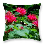 Flying Bee With Bee Balm Flowers Throw Pillow