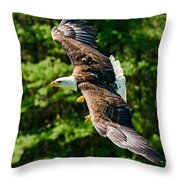 Flying Eagle Throw Pillow