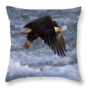Flying Over Ice Throw Pillow