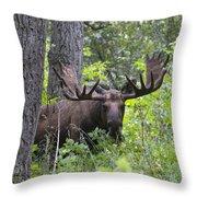 Focused Throw Pillow