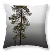 Foggy Lake Throw Pillow