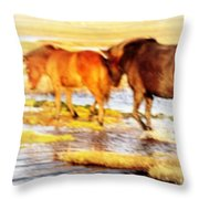 Our Whole Life We Just Follow The Stream  Throw Pillow