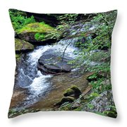Forest Creek Throw Pillow
