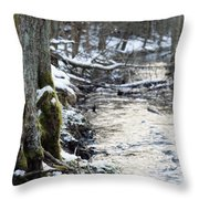 Forest Lights Throw Pillow