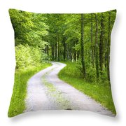 Forest Road Throw Pillow