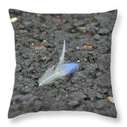 Found Feather Throw Pillow