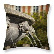 Fountain - Place Des Vosges Throw Pillow