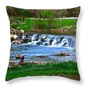Framed Falls Throw Pillow