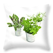 Fresh Herbs Throw Pillow