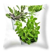 Fresh Herbs In Pots Throw Pillow
