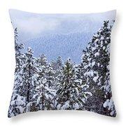 Fresh Snow Throw Pillow