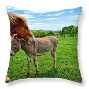Friends On The Farm Throw Pillow
