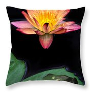 Frog And Waterlily Throw Pillow