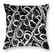 Frosty Plants  Throw Pillow