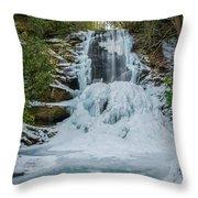 Frozen Catawba Throw Pillow
