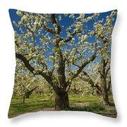 Fruit Orchard Throw Pillow