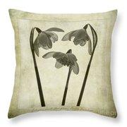 Galanthus Nivalis Flore Pleno Throw Pillow