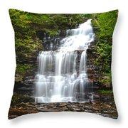 Ganoga Falls Throw Pillow