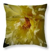 Garden Lady Throw Pillow