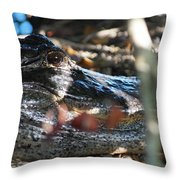 Gator In The Shade Throw Pillow