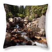 Geneva Falls Throw Pillow