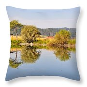 George Town Lake Reflections Throw Pillow