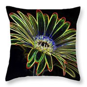 Gerbera Glow 1 Throw Pillow