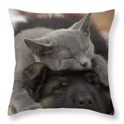 German Shepherd And Chartreux Kitten Throw Pillow