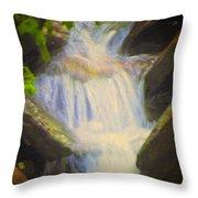 Glen Iris Waterfall Throw Pillow