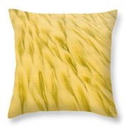 Golden Sand Pattern Created By Surf On Beach Throw Pillow