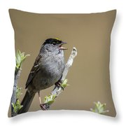 Goldencrowned Sparrow Throw Pillow
