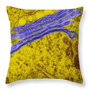 Golgi Apparatus Throw Pillow