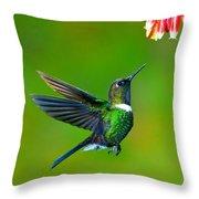 Gorgeted Sunangel Throw Pillow