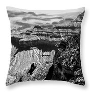 Grand View Throw Pillow by Camille Lopez