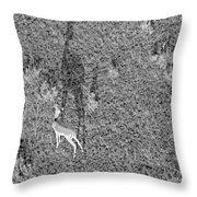 Grants Gazelle Throw Pillow