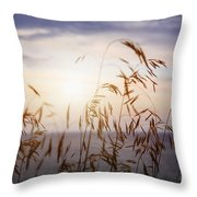 Grass At Sunset Throw Pillow