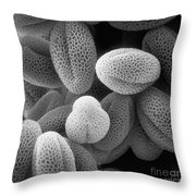 Grass Pollen Sem X38,000 Throw Pillow