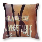 Great American Food Truck Throw Pillow