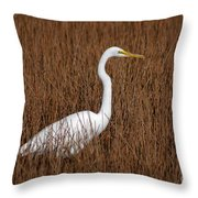 1- Great Egret Throw Pillow