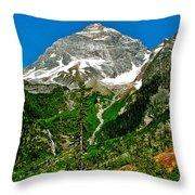Great Glacier Trail In Glacier Np-british Columbia Throw Pillow
