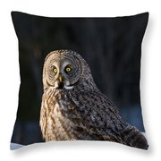 Great Gray Owl Pictures 789 Throw Pillow