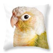 Green-cheeked Conure Pineapple P Throw Pillow