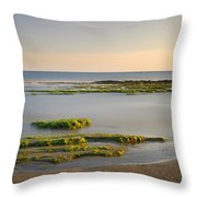 Green Coast Throw Pillow
