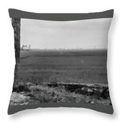 Green Fields With Birds Throw Pillow