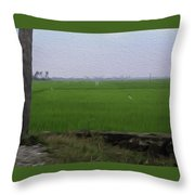 Green Fields With Birds In Kerala Throw Pillow