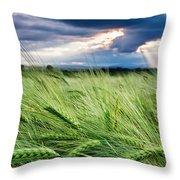 Green Ocean Throw Pillow